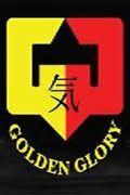 Brice guidon vs raul catinas superkombat world grand prix 12042014 1080i