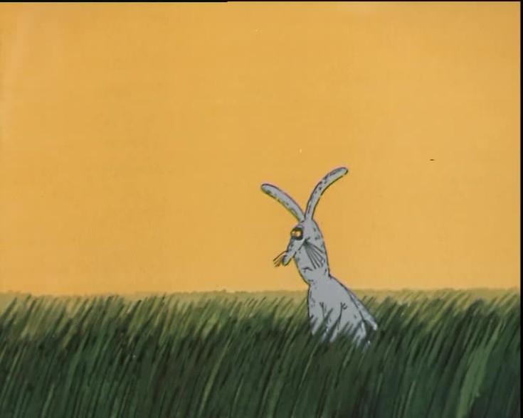 Картинки из мультфильма зайца не видали